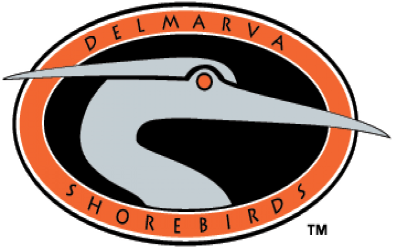 Shorebird baseball coupon