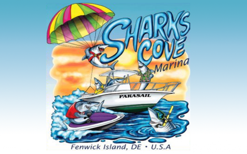 Shark's Cove Paddle Board coupon